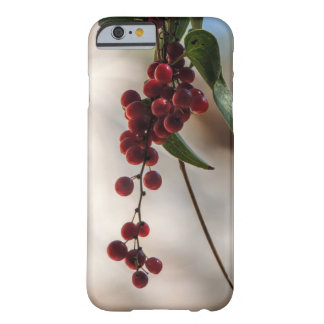 Red fruit barely there iPhone 6 case