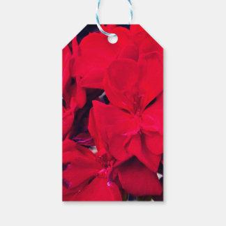 Red Geranium Blossom Gift Tags