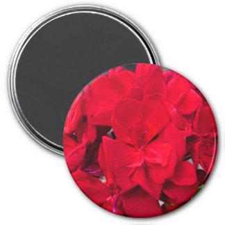 Red Geranium Blossom Magnet