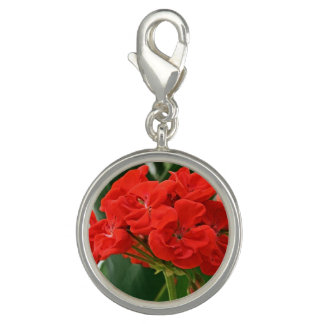 Red Geranium Photo Charms