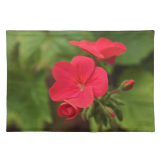 Red geranium place mats. placemat