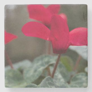 Red Geranium Stone Coaster