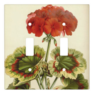 Red Geranium with Variegated Leaves Light Switch Cover