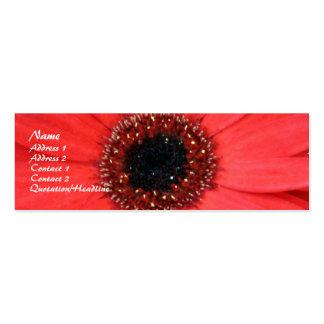 Red Gerbera, Business Card Template
