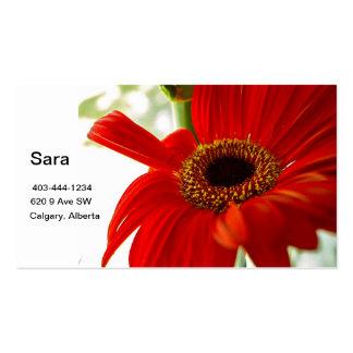 Red Gerbera Pack Of Standard Business Cards