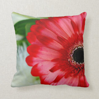 Red Gerbera Daisy Blooming Pillow