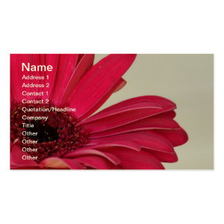Red Gerbera Daisy Business Card