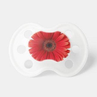 Red Gerbera Daisy Pacifier