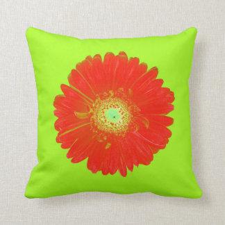 Red Gerbera Daisy Pillow