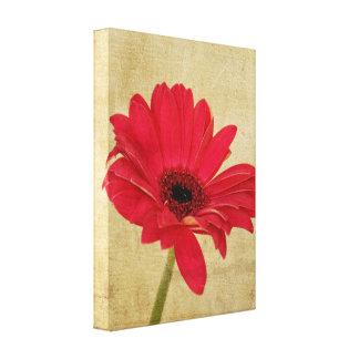 Red Gerbera Flower Canvas Canvas Prints