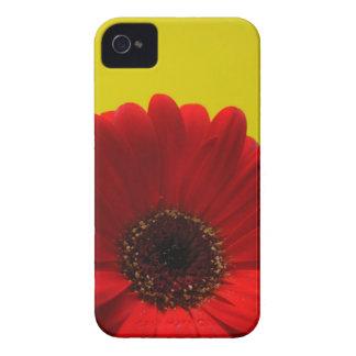 Red Gerbera iPhone 4 Covers