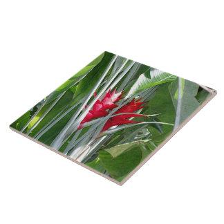 Red Ginger Tile