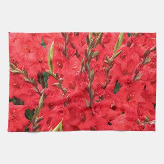 Red gladioli flowers in bloom kitchen towel