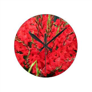 Red gladioli flowers in bloom wallclock