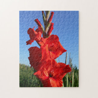 Red Gladiolus And The Blue Sky Jigsaw Puzzle
