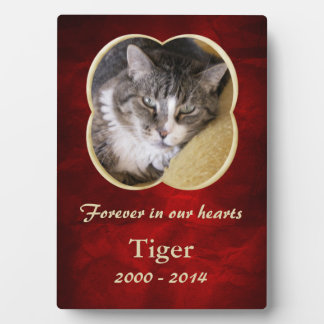 Red Gold Frame Pet Memorial Template