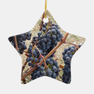 Red grapes on the vine . Tuscany, Italy Ceramic Star Ornament