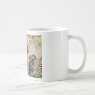 Red grapes on the vine . Tuscany, Italy Coffee Mug