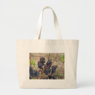 Red grapes on the vine . Tuscany, Italy Large Tote Bag