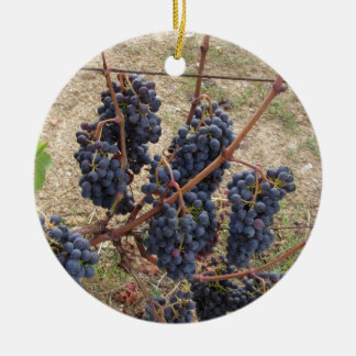 Red grapes on the vine . Tuscany, Italy Round Ceramic Ornament