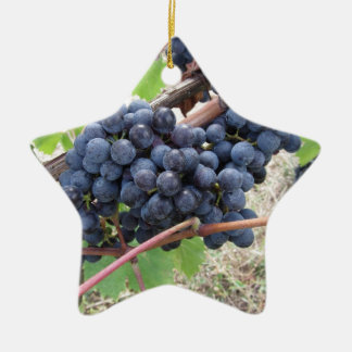 Red grapes on the vine with green leaves ceramic star ornament