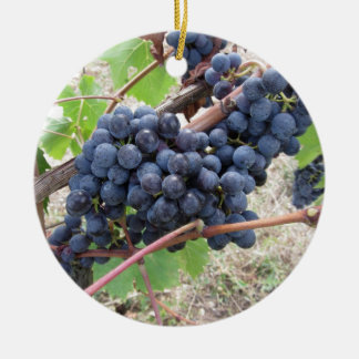 Red grapes on the vine with green leaves round ceramic ornament