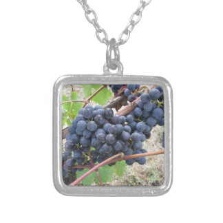Red grapes on the vine with green leaves silver plated necklace