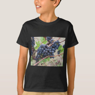 Red grapes on the vine with green leaves T-Shirt