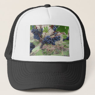 Red grapes on the vine with green leaves trucker hat