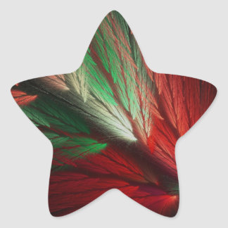 Red & Green Abstract Fractal Star Sticker