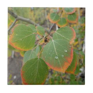 red green aspen leaf tile