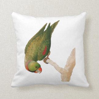 Red Green Parrot Throw Pillow