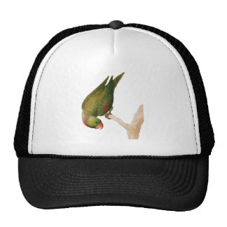 Red Green Parrot Trucker Hat