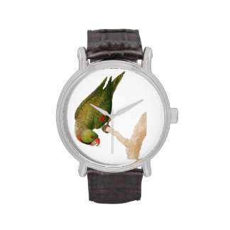 Red Green Parrot Watch