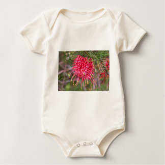 Red grevillea flower in bloom baby bodysuit
