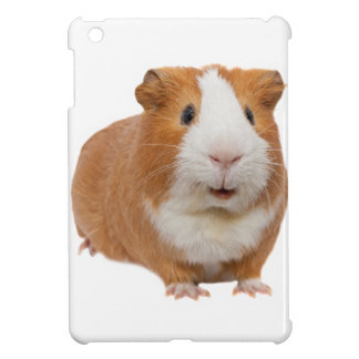 red guinea pig case for the iPad mini