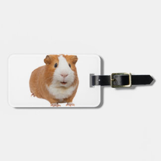 red guinea pig luggage tag