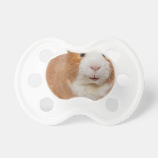 red guinea pig pacifier