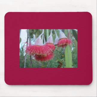 Red Gum Flower Mouse Pad
