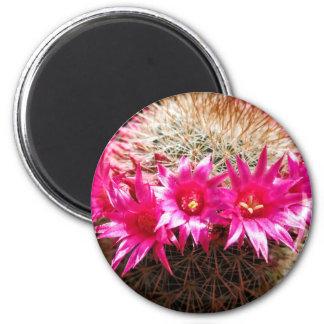 Red Headed Irishman Cactus, Customizable! 2 Inch Round Magnet