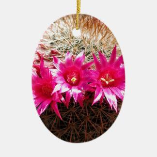Red Headed Irishman Cactus, Customizable! Ceramic Oval Ornament