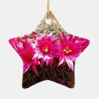 Red Headed Irishman Cactus, Customizable! Ceramic Star Ornament