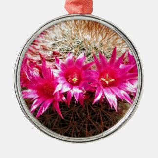 Red Headed Irishman Cactus, Customizable! Silver-Colored Round Ornament