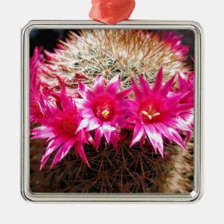 Red Headed Irishman Cactus, Customizable! Silver-Colored Square Ornament