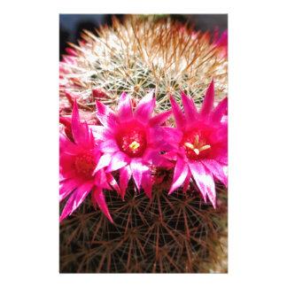 Red Headed Irishman Cactus, Customizable! Stationery