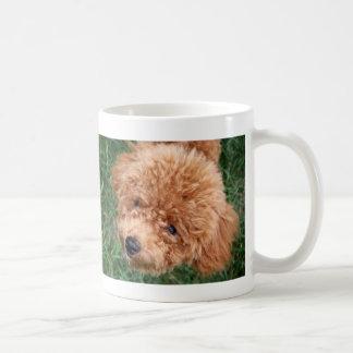 Red Headed Toy Poodle Coffee Mug