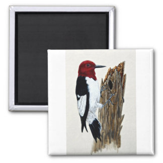 Red-headed woodpecker square magnet