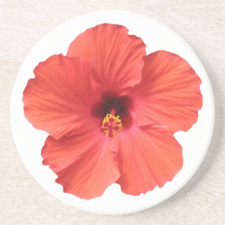 Red Hibiscus coasters