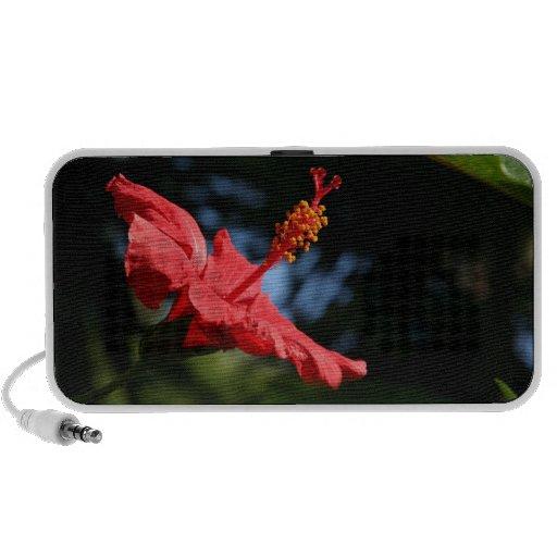 Red Hibiscus Flower OrigAudio Doodle Speaker