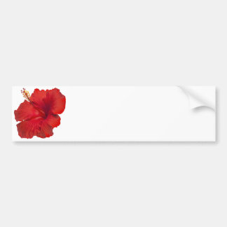 Red Hibiscus on White - Customized Template Bumper Sticker